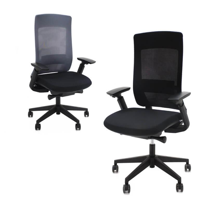 Ergonomische bureaustoel Pro X